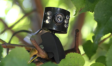 1 Spy Store Shop Spy Equipment Spy Gadgets Gear Amp Devices